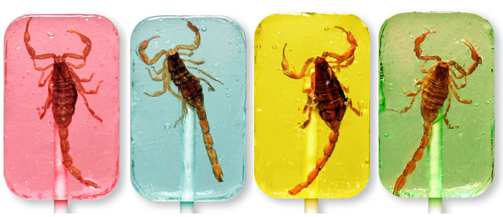 Scorpion suckers for sale at Hotlix | 5j Design